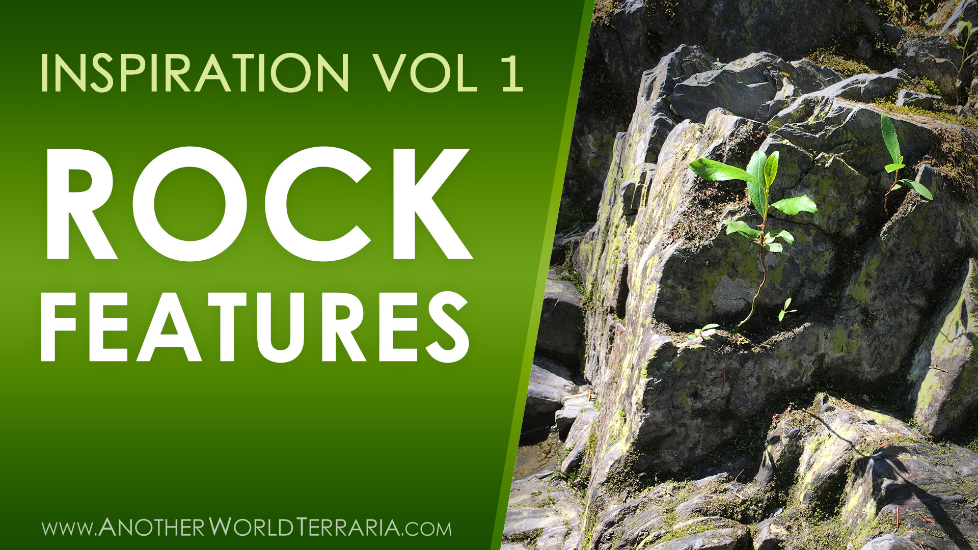 Terrarium Inspiration Nature Photos – Volume 1 – Rock Walls