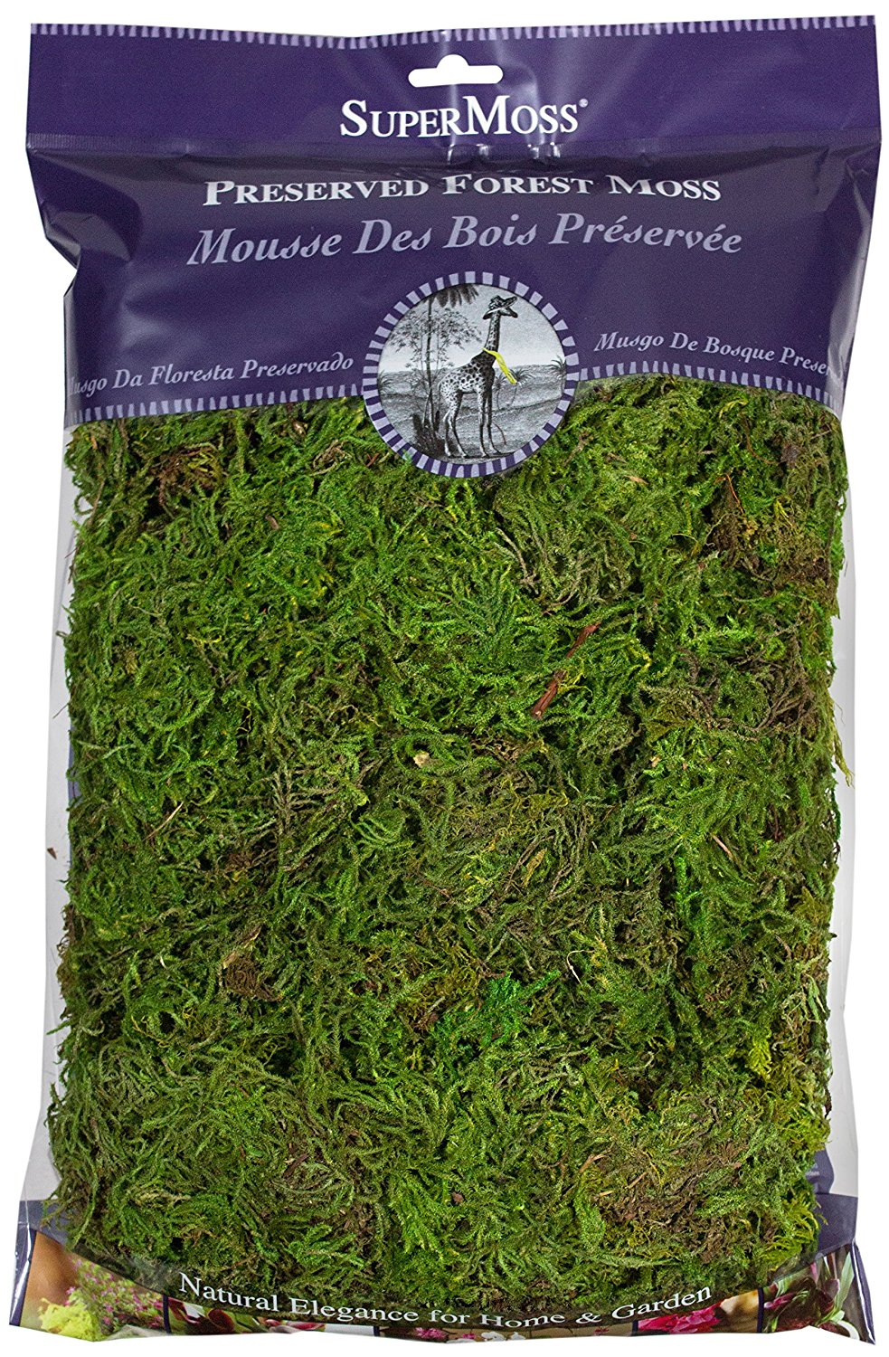 Preserved Craft Moss
