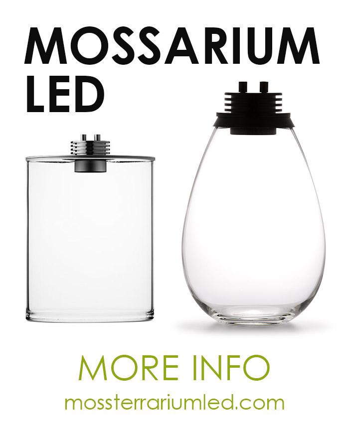 MossTerrariumLED.com