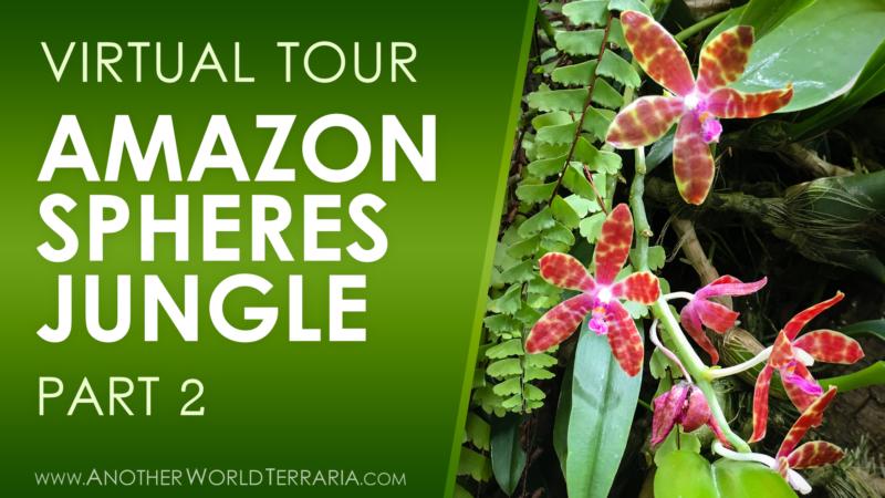 Amazon Spheres Jungle Tour Part 2