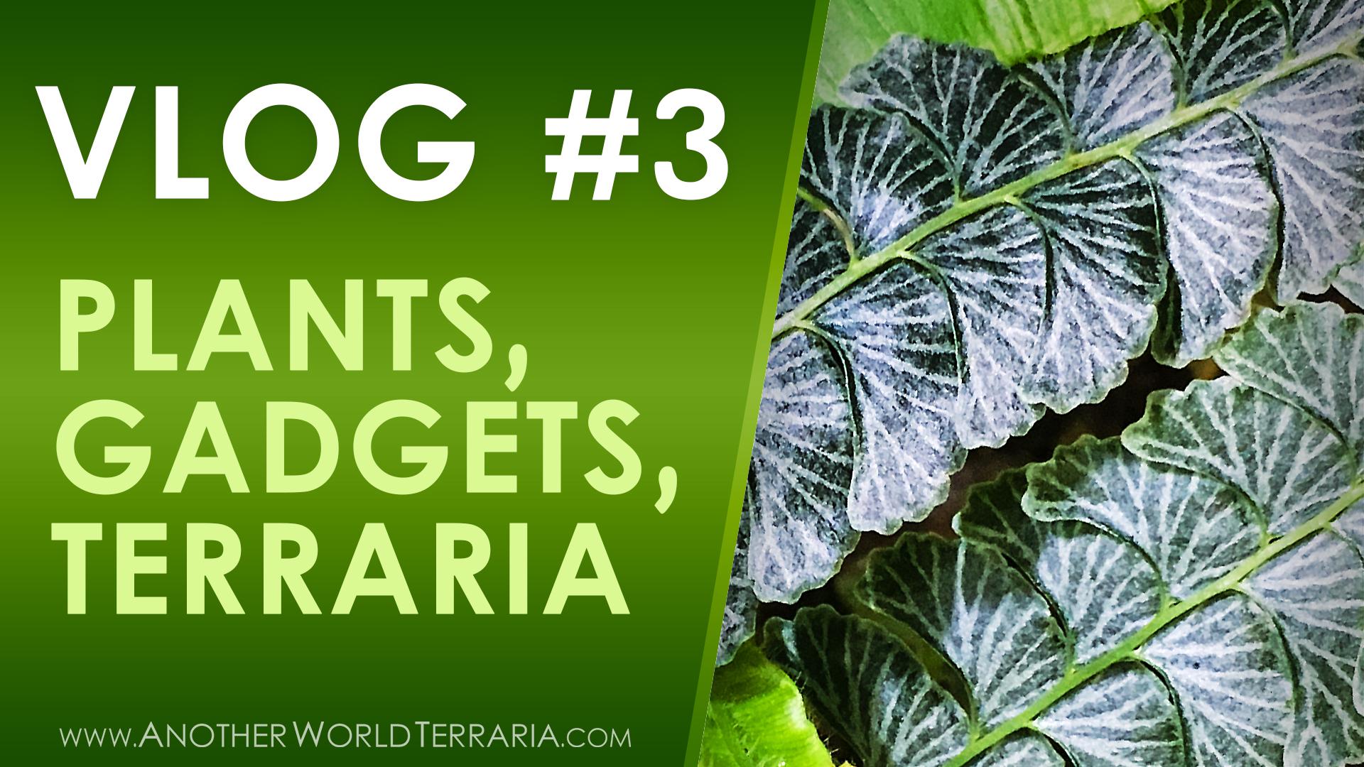Vlog #3 – Plants, Gadgets, Brancharium (and more!)