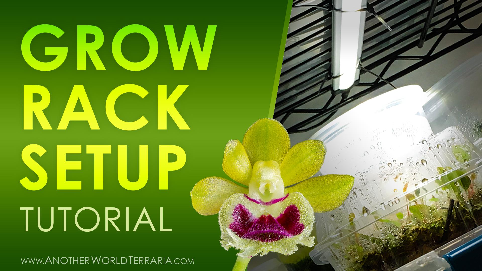 Grow Rack Setup Tutorial